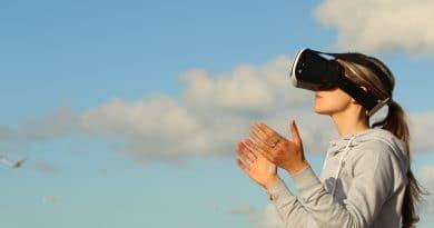Virtuelle Führung – eine neue Sau wird durchs Dorf getrieben